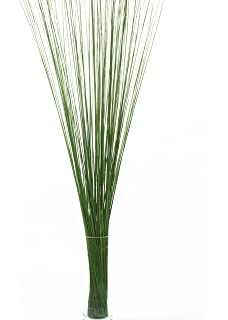 Amazon tall grass stems 48 tall 3 pack of 75 plum greenfloralcrafts whispies 4 tall green workwithnaturefo