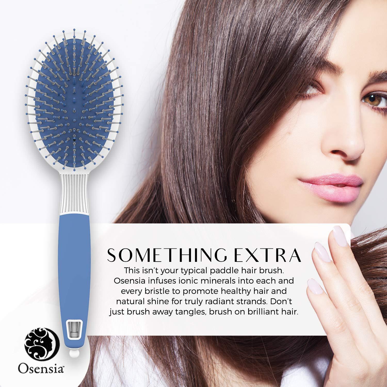 Cepillo desenredarte de pelo ovalado - Cepillo de pelo profesional iónico - Cepillo de cerdas de Nylon antiestáticas - Cepillo de peinado y secado para todo ...