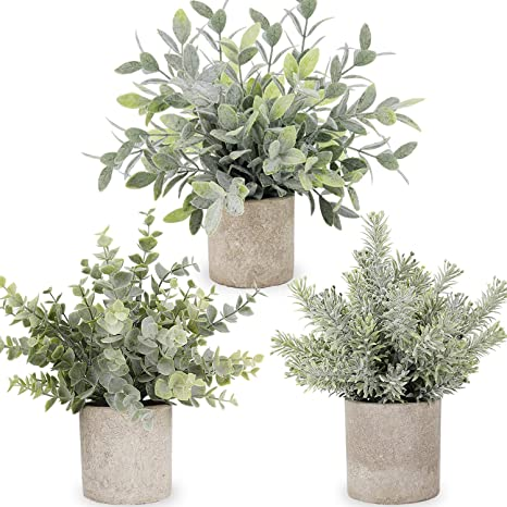 Amazon Com C Appok Artificial Potted Plants 3 Pack Mini Fake Eucalyptus Plant Small Plastic Green Grass With Pot Faux Eucalyptus Rosemary Plants For Shelf Home Decor Indoor Table Decoration Home