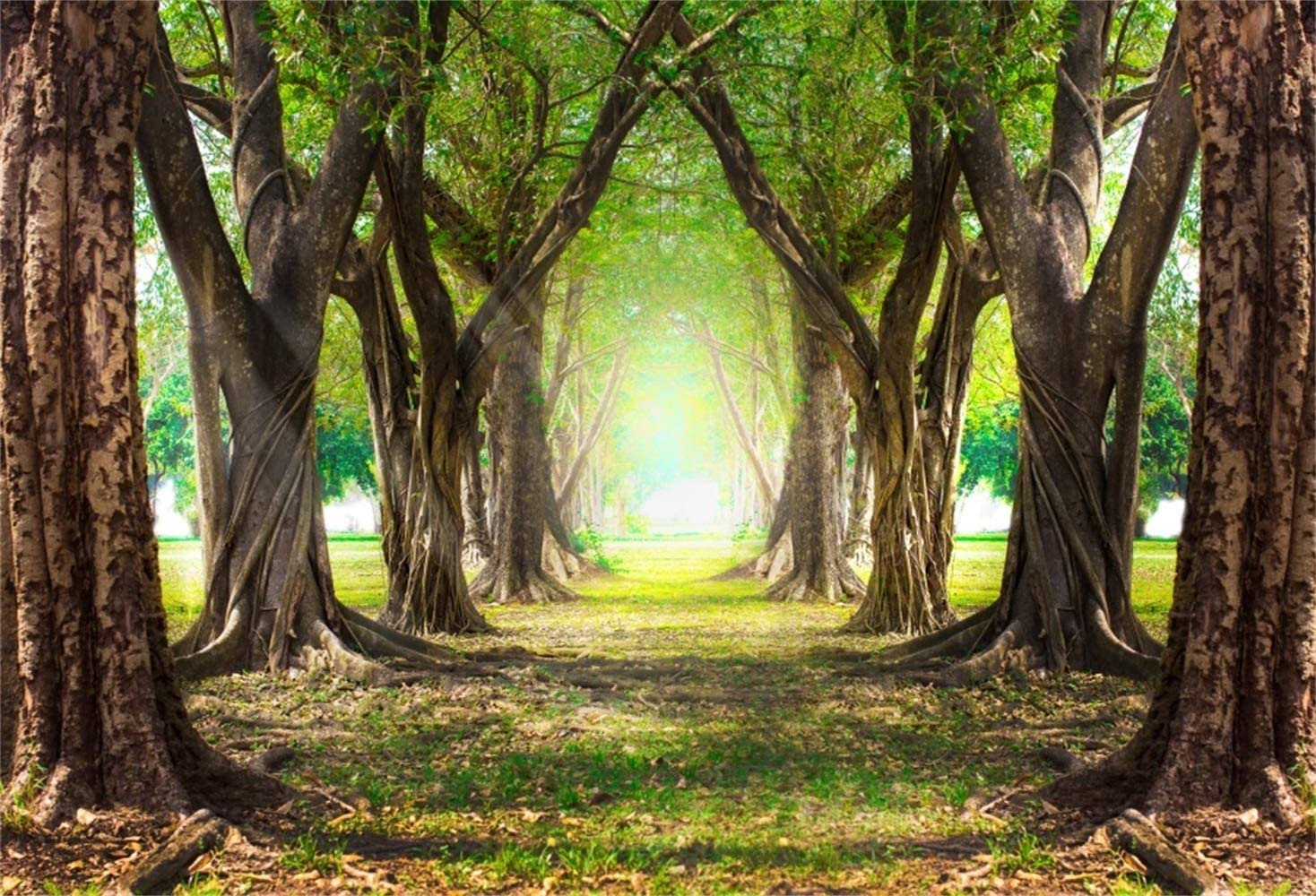 Laeacco Spring Line of Trees Passage 7x5ft Vinyl Photography Background Vibrant Old Trees Green Grassland Spring Scenic Backdrop Wedding Shoot Landscape Wallpaper Studio Props