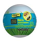 Nema Globe 75 Million Nematodes (Sc) - Flea Buster