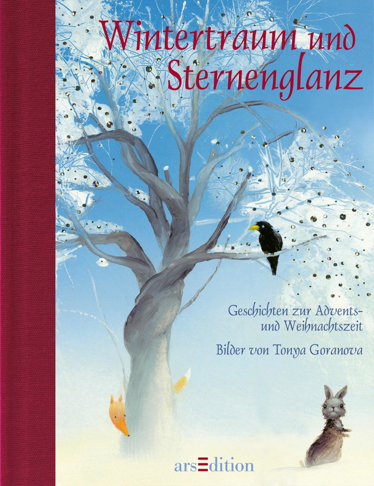 Wintertraum und Sternenglanz (Medi)