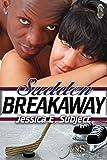 Sudden Breakaway (1Night Stand Book 133)
