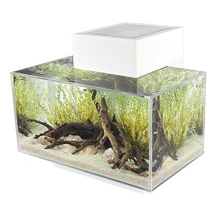 Fluval Edge 6-Gallon Aquarium with 21-LED Light, White