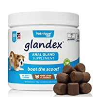 Glandex Anal Gland Soft Chew Treats with Pumpkin for Dogs 60ct Chews with Digestive Enzymes, Probiotics Fiber Supplement for Dogs – Vet Recommended - Boot The Scoot - by Vetnique Labs
