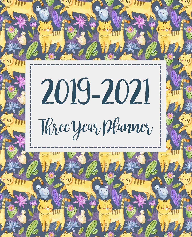 Amazon.com: 2019 2021 Three Year Planner: Monthly Schedule