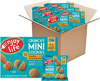 product image for Enjoy Life Crunchy Mini Vanilla Honey Graham Cookies, Nut Free Cookies, Dairy Free, Soy Free, Non GMO Mini Cookies, 6 Boxes (6 Snack Packs Each)