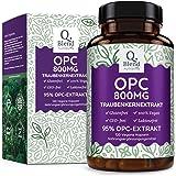 OPC Traubenkernextrakt - 800mg OPC pro Tagesdosis - Höchste Dosierung auf dem Markt 120 vegane Kapseln - Laborgeprüft - Premium Qualität: aus französischen Weintrauben