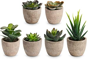 Artificial Succulent Plants Potted,6 Pcs Mini Succulents Plants Artificial in Pots Faux Succulents Plants Indoor Home Decorations, Faux Succulents for Home,Bookshelf, Kitchen Counter Decor
