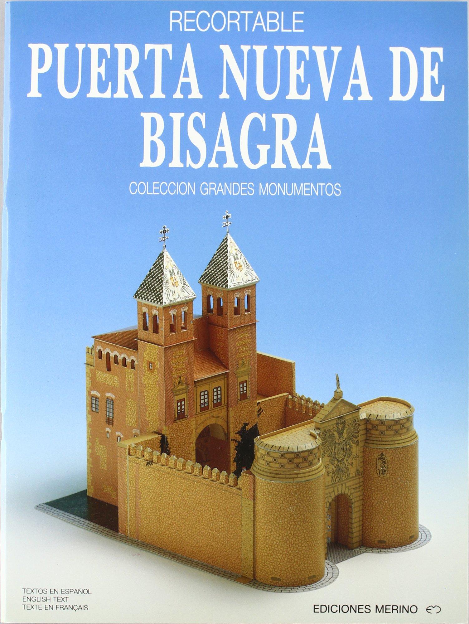 Puerta Nueva De Bisagra: 9788486912246: Amazon.com: Books