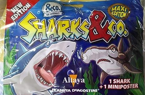 SHARKS and CO Maxi Eticion 2018 Sobres Coleccionables Tiburones Edición Nueva