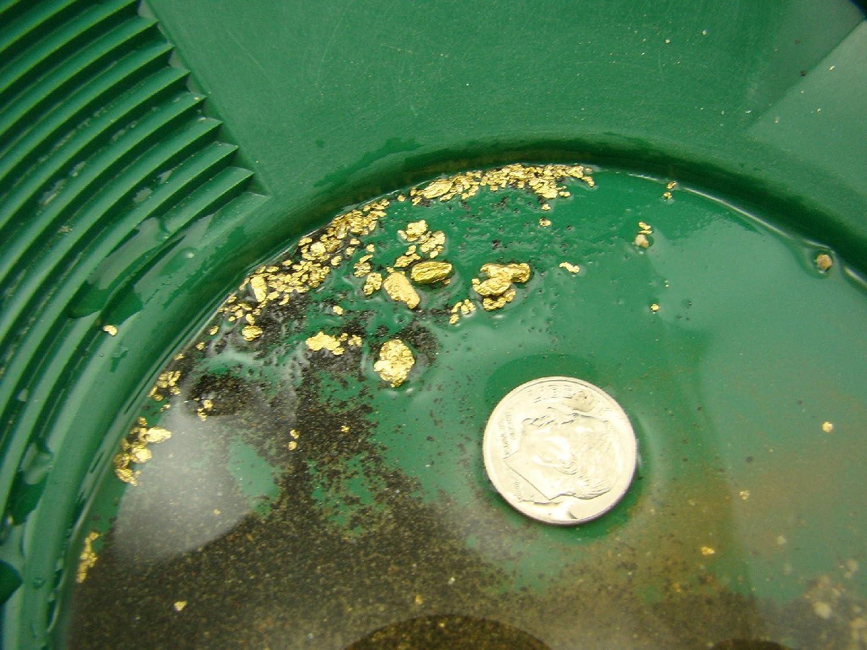 2 Pound Goldn Paydirt Gold Panning Paydirt