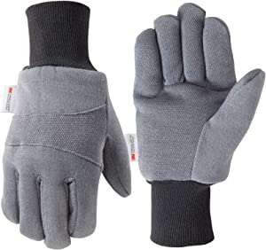 Men's Cold Weather Jersey Work Gloves, 100-gram Thinsulate, Rubber Dots for Grip, Large (Wells Lamont 716L)