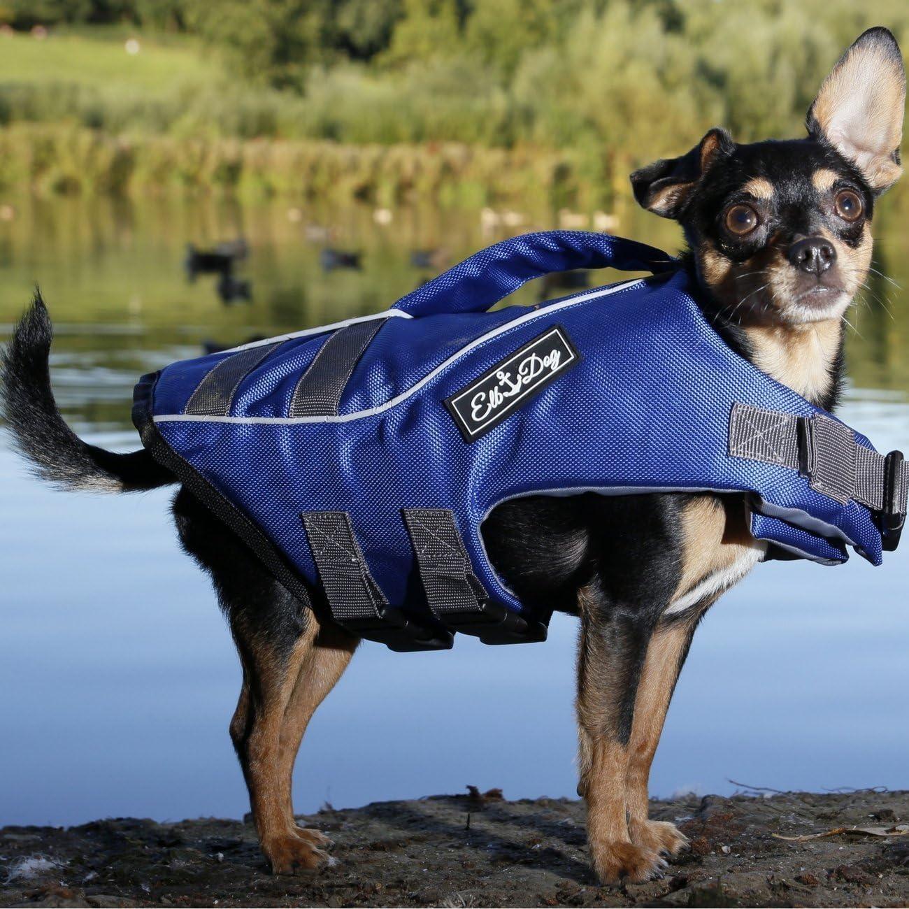 Schwimmweste Rettungsweste Hund Schwimmtraining Hunde-Rettungsweste Wassergew/öhnung Elb Dog Hunde-Schwimmweste Blau Schwimmhilfe Kleine Hunde