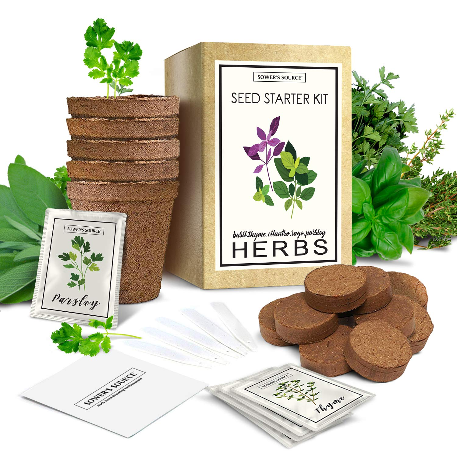Herb Garden Starter Kit (Indoor) Natural, Organic Planting | Pots, Markers, Seed Packets, Soil Mix | Fresh Basil, Cilantro, Parsley, Sage, Thyme | Beginner Friendly by Sower's Source