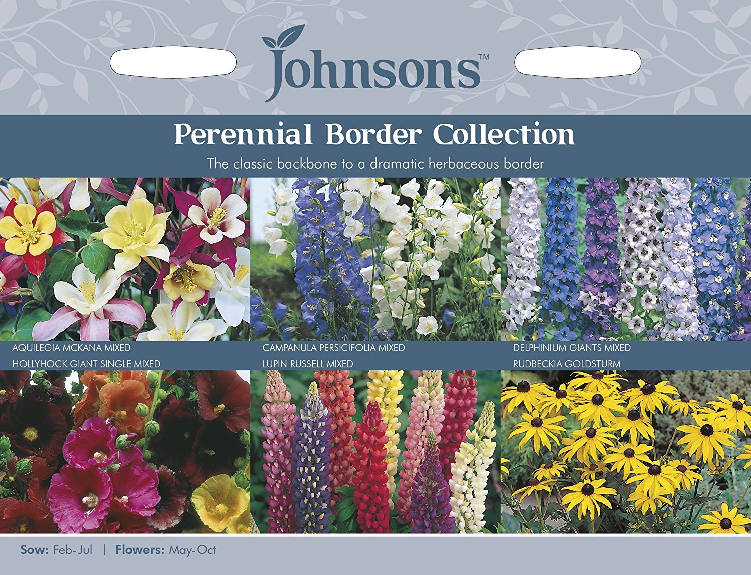 Johnsons Seeds Pictorial Pack Flower Perennial Border