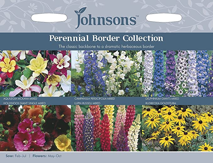 Johnsons seeds pictorial pack flower perennial border johnsons seeds pictorial pack flower perennial border collection amazon garden outdoors mightylinksfo