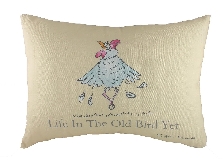 b38f585c50d Ann Edwards Evans Lichfield Ltd Proverbs Old Bird Cushion