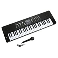 Axman LP5450 Keyboard incl. microphone and power supply connection