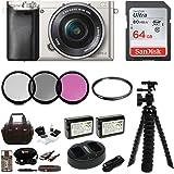 Sony Alpha a6000 Mirrorless Camera w/ 16-50mm Lens & 64GB Card Bundle (Silver)