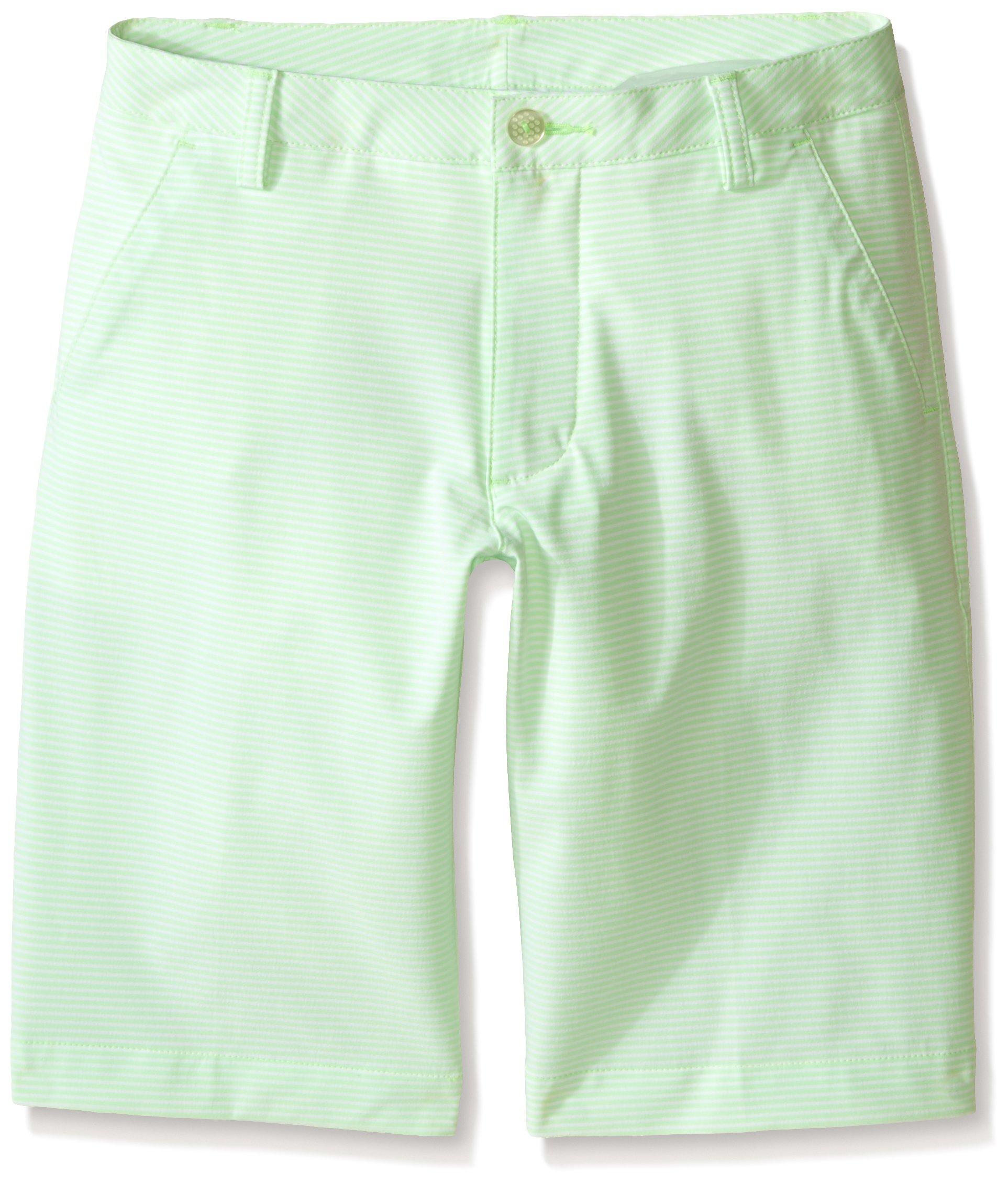 PUMA Golf Boys' Stripe It Shorts (Big Kids), Green Gecko, Large