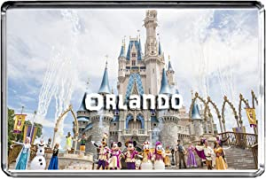 USA E361 Orlando Florida Fridge Magnet Travel Photo Refrigerator Magnet
