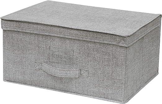 Cflagrant – Caja de almacenaje plegable reforzado XL Dim: 40 x 20 x 30 cm con tapa y asa (gris claro): Amazon.es: Hogar