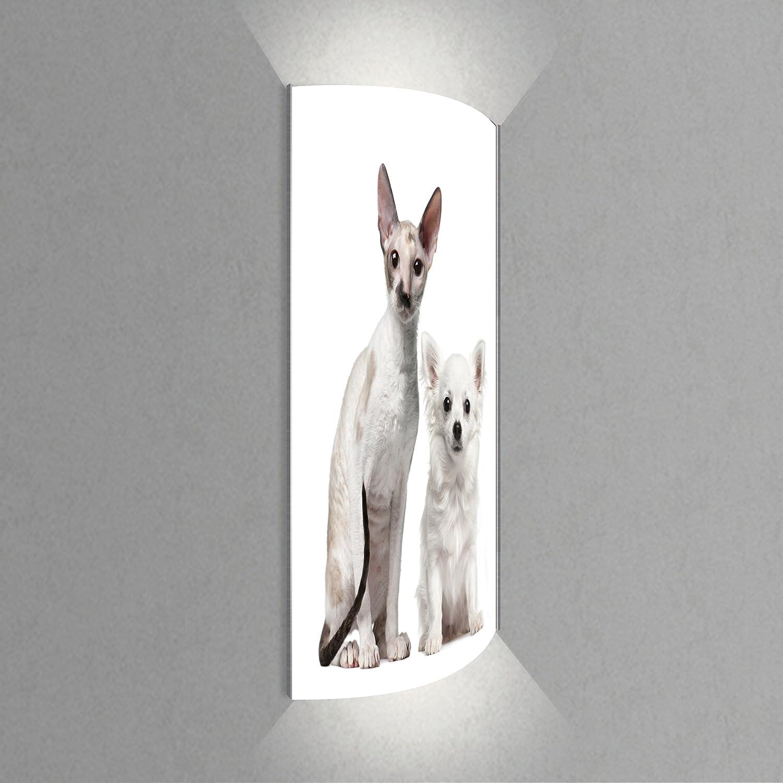 Luminoase-Leuchten - Leuchte Wir Zwei - Nachleuchtende hochwertige LED Acrylglas Wandbildlampe, Motiv Tier (570 x 1200 mm)