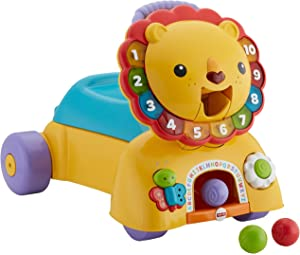f6d334f95 Amazon.com  Fisher-Price 3-in-1 Sit