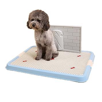 Oriental Elife regla plástico interior mascota perro gato cachorro de inodoro herramienta de formación bandeja de