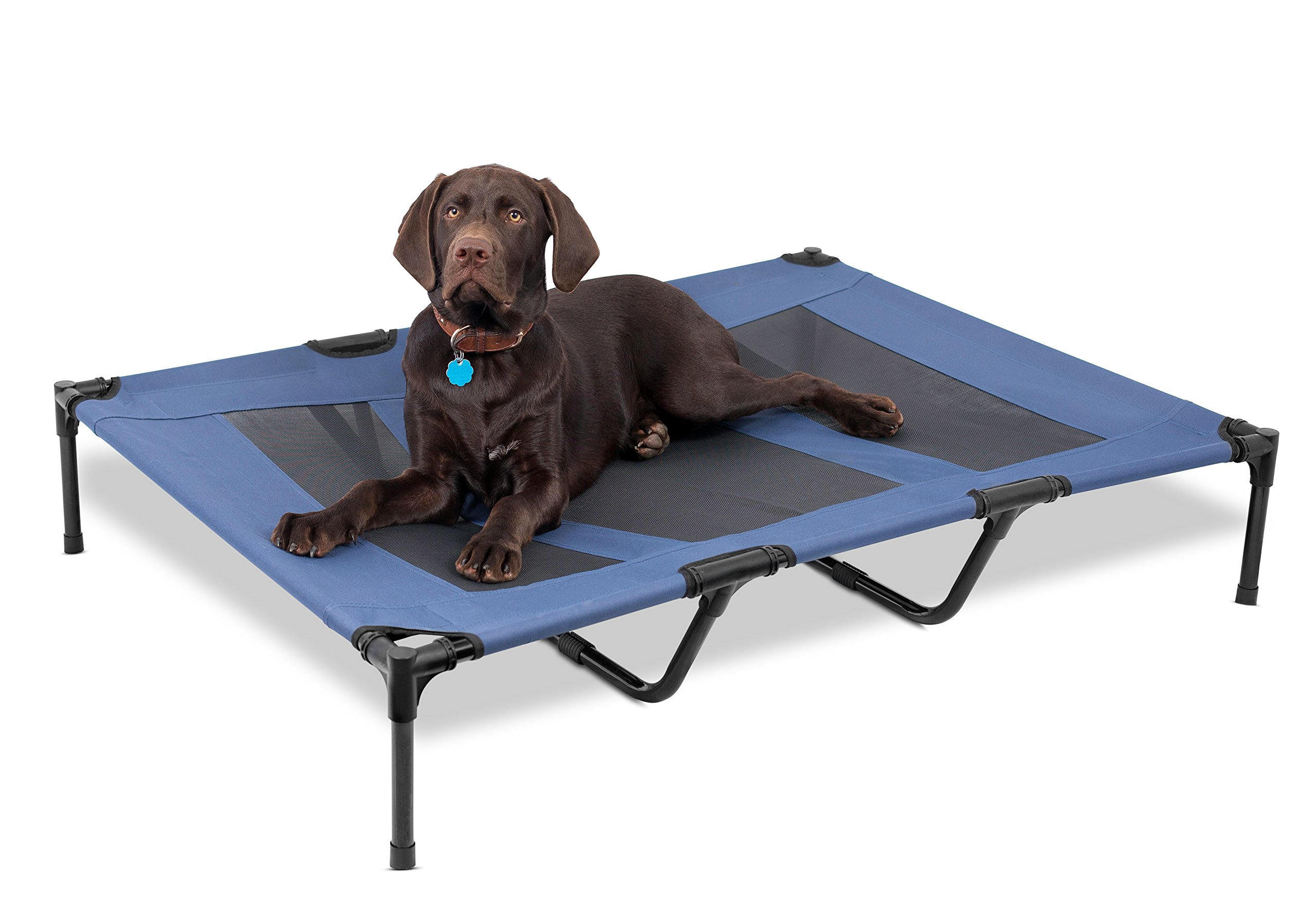 Internet's Best Dog Cot | 48 x 36 | Elevated Dog Bed | Cool Breathable Mesh | Indoor or Outdoor Use | Large | Blue