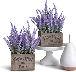 Butterfly Craze Artificial Lavender Potted Plant Giveaway