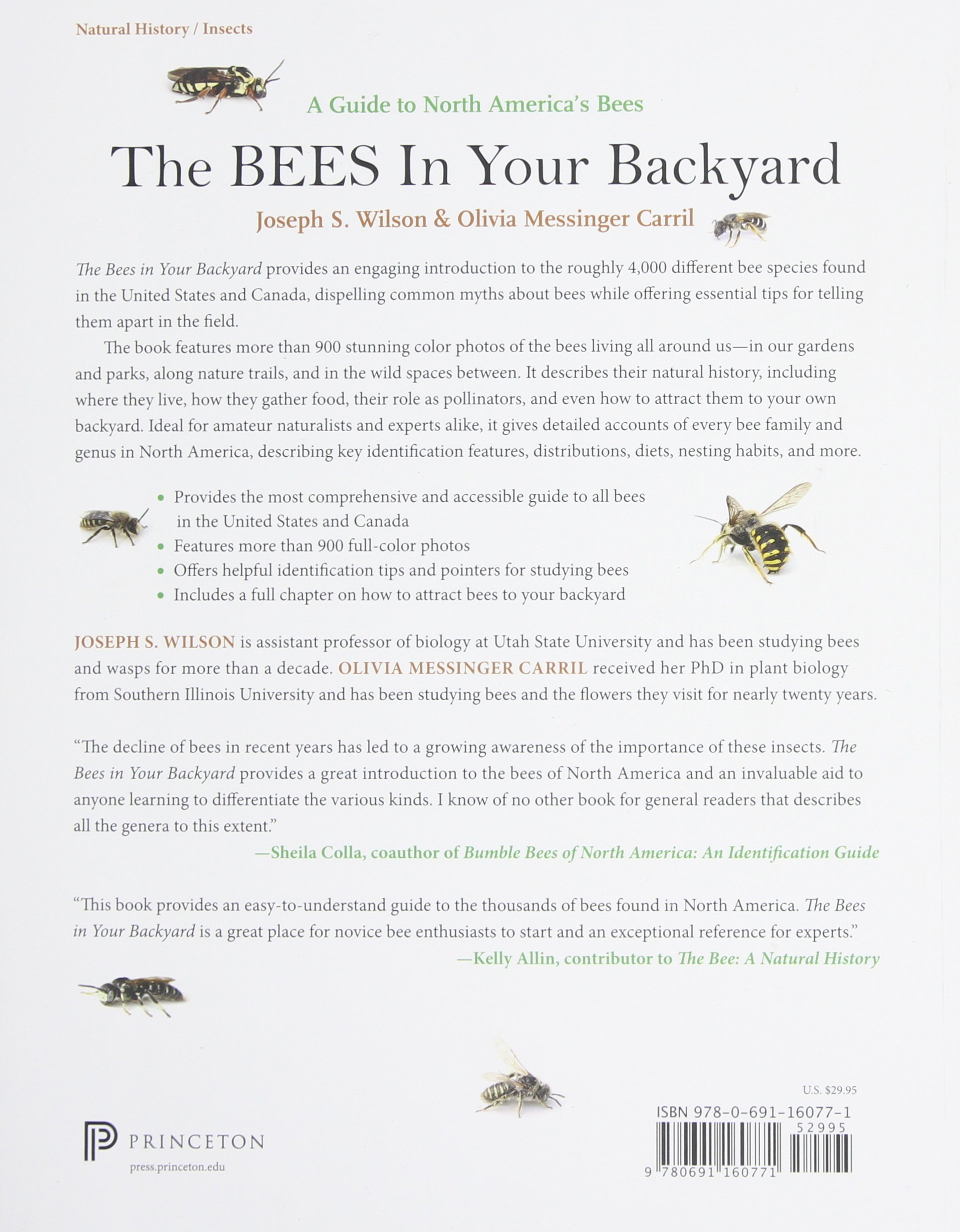 the bees in your backyard a guide to north america u0027s bees joseph