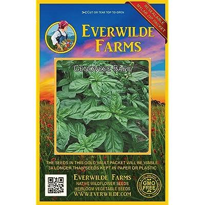 Verazui 2000 Genovese Basil Herb Seeds - : Garden & Outdoor