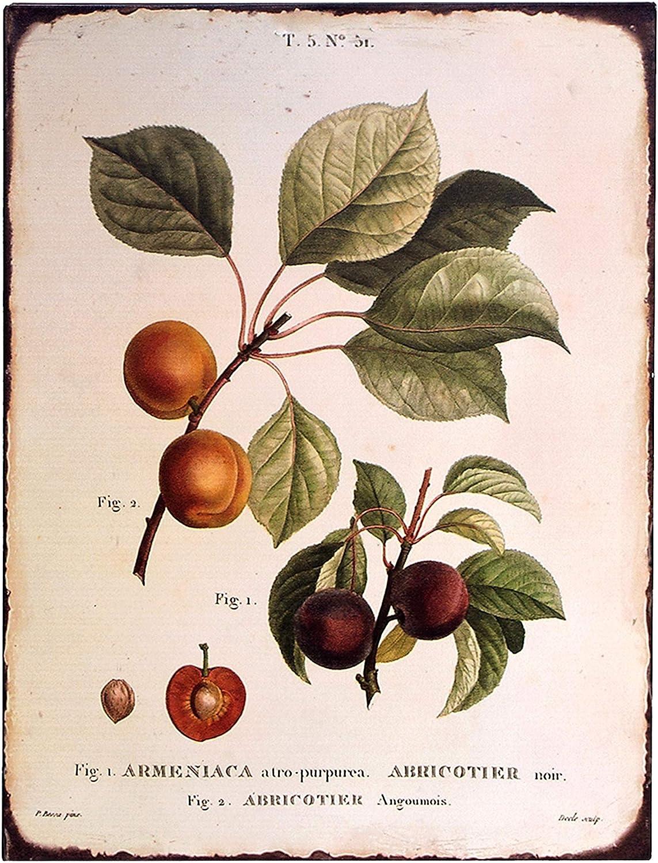 "Barnyard Designs Vintage Botanical Peach Tin Sign, Primitive Country Farmhouse Home Decor Sign 10"" x 13"""