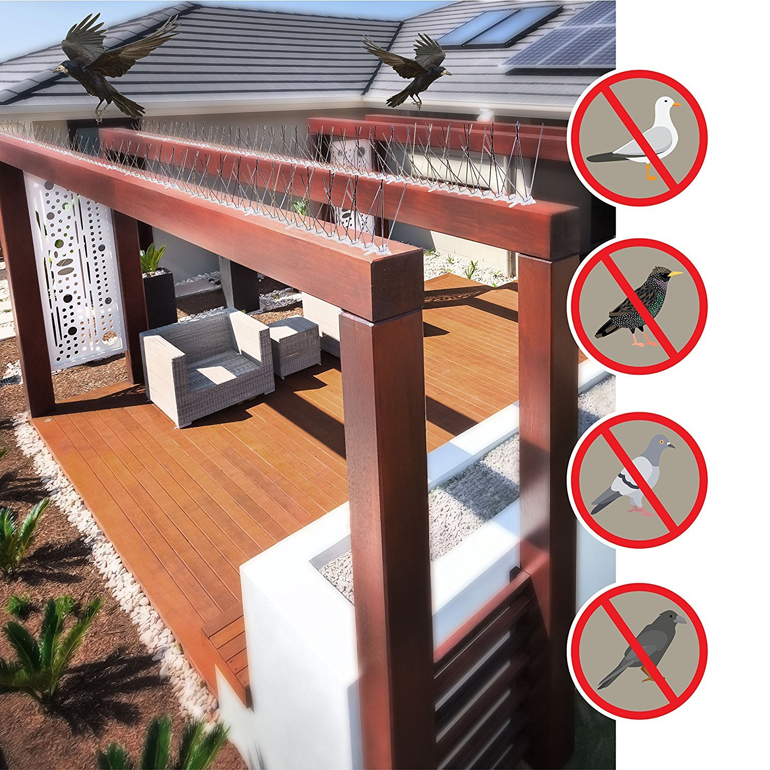 Garden Mile® Thin Plastic Bird and Pigeon Spikes 1 Metre Packs. A humane Bird and Pigeon Control Deterrent. Humane pigeon and bird pest control anti-roosting repellent. For Garden Walls Fences Roofs Etc. (1)