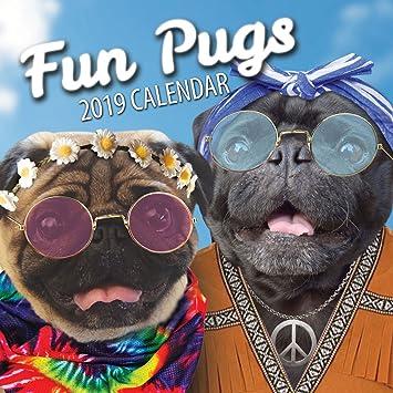 Fun Pugs 2019 Pug Wall Calendar Amazon Office Products