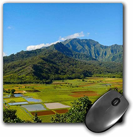 mp/_230643/_1 8 x 8 3D RoseHanalei Valley Lookout Taro Fields Kauai Hawaii Matte Finish Mouse Pad