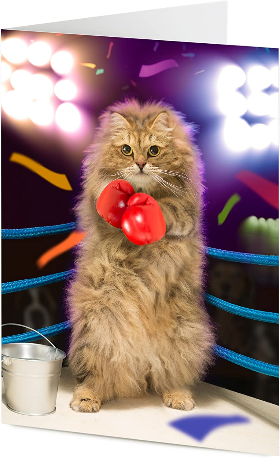 Father/'s Siberian cat in boxing ring Birthday Mother/'s day card