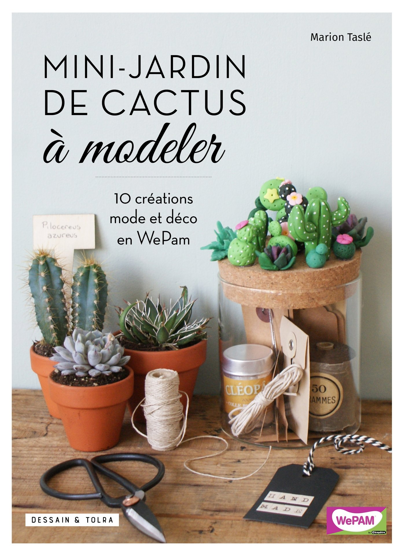 Mini-jardin de cactus à modeler Hors Collection - DIY: Amazon.es: Taslé, Marion: Libros en idiomas extranjeros