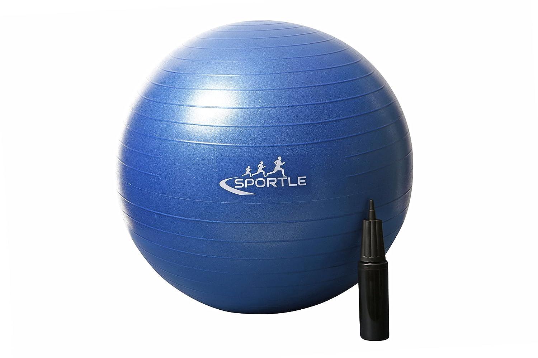 Tapis de yoga /étanche Pompe /Équipement luxueux de yoga 2 briques de yoga lentra/înement la physioth/érapieBallon de yoga antid/érapant et anti-/éclatement de 65/cm 5 accessoires pour le yoga les pilates