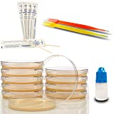 Amazing Bacteria Science Kit - Prepoured Agar