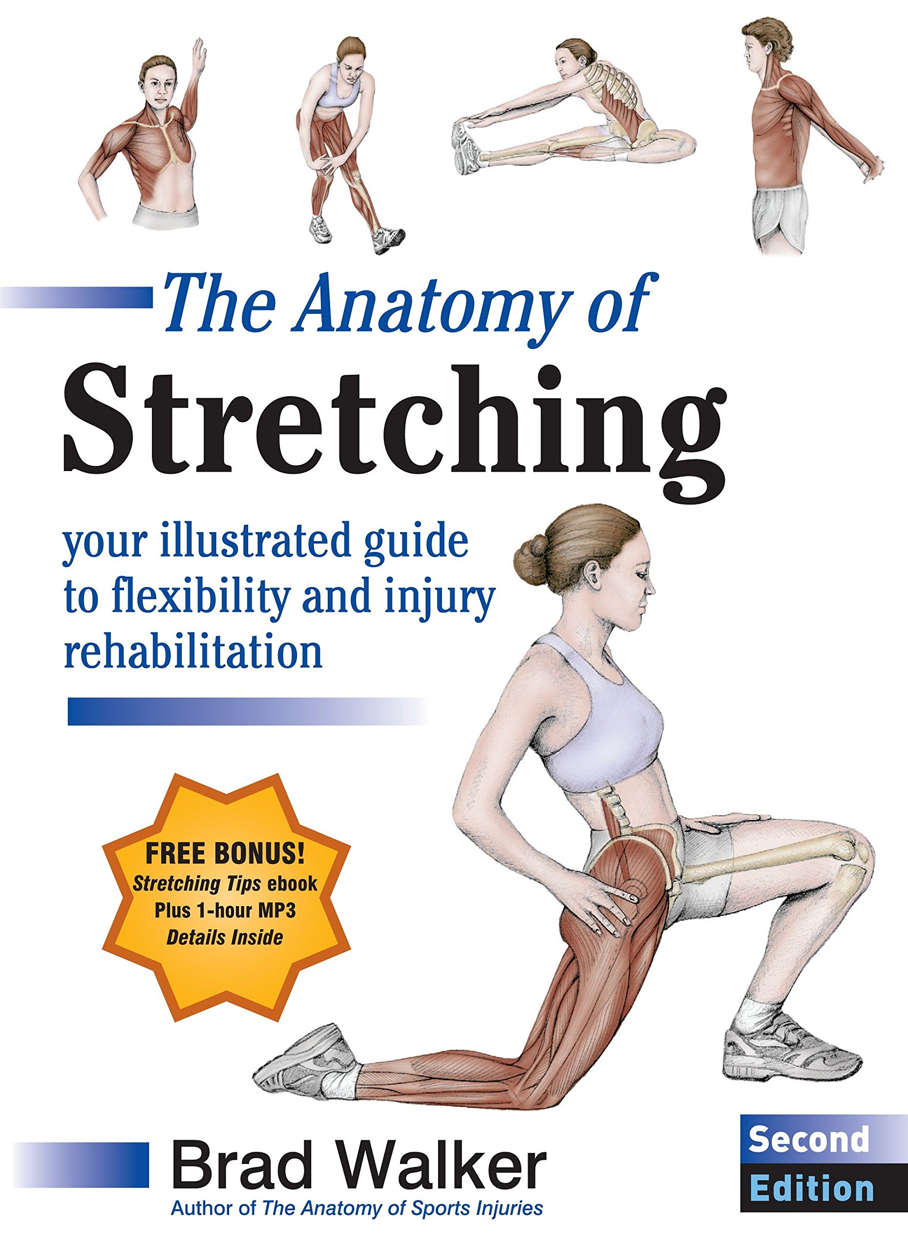 The Anatomy of Stretching, Second Edition: Your Illustrated Guide to ...
