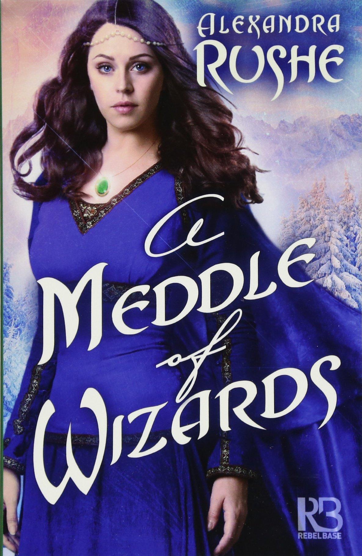 A Meddle of Wizards pdf epub