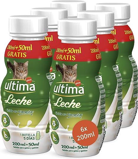 Ultima Leche para Gato de Fácil Digestión - 6 Botellas: Amazon.es ...