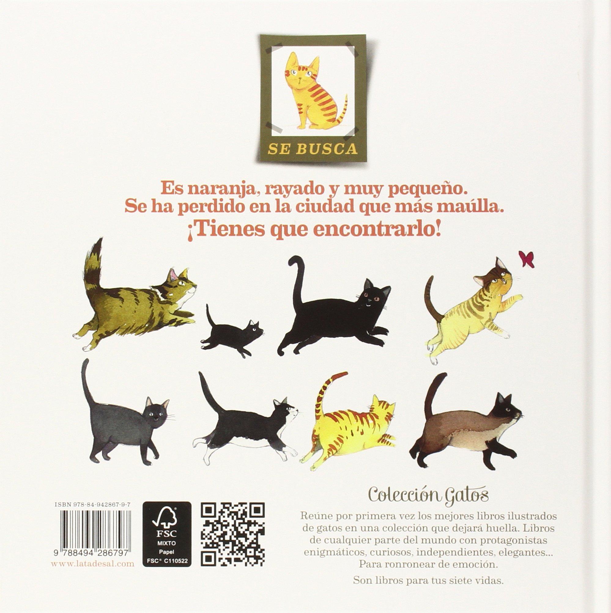La ciudad de los gatos (Spanish Edition): Carmen García Iglesias, Lata de Sal: 9788494286797: Amazon.com: Books