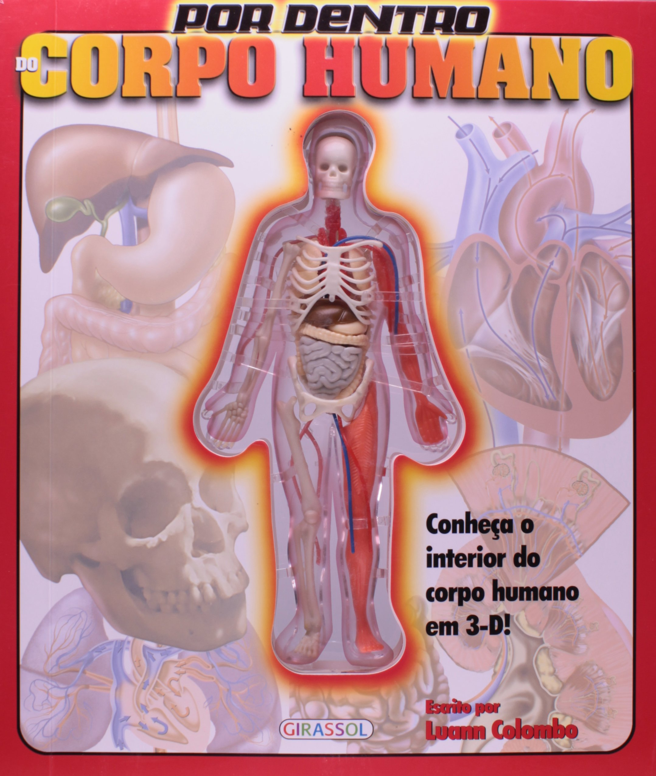 Por Dentro Do Corpo Humano Luann Colombo Max Steinmetz 9788574885230 Amazon Com Books