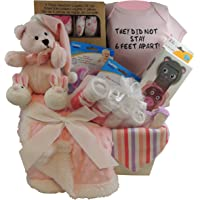 Baby Girl Gift Basket: They Did Not Stay 6 Feet Apart. Pink Bear, Sherpa Blanket. 3pc Snack Containers, 3pc Layette Gift…