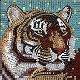 Mosaico Kit, 20x20 cm, Tigre