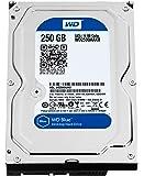 WESTERNDIGITAL WD 3.5インチ 内蔵 HDD【安心の茶箱梱包】SATA 250GB 7200rpm WD2500AAKX【 メーカーリファブ 】